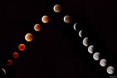 Total Lunar Eclipse (boguslaw_pogoda) Tags: total moon eclipse sky universe space nature red phase phases bloody shadow photo picture photography astronomy phenomenon