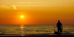 Sunset (AstridSusann) Tags: nl grootekeeten sunset spaziergang hund sommer noordholland