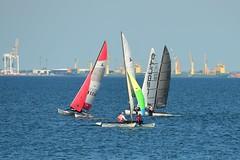 800_4418 (Lox Pix) Tags: queensland qld australia woodypoint hyc humpybongyachtclub winterbash foiling foilingcatamaran catamaran trimaran loxpix bramblebay boats