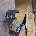 Senius and Aschius and the Capitoline Wolf - Il Campo, Siena thumbnail