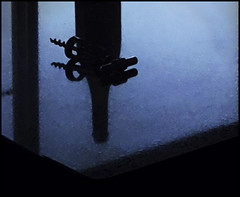 With a meal (Bob R.L. Evans) Tags: winebottle blue composition drink corkscrew reflection unusual dada simple