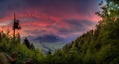 Niesen Morning (Bugtris) Tags: 2470f4l wandern landschaft berg morgen hdrdri wald niesen canon 5dmkiii alpen wolken