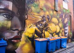 The face and the Bees minding the bins in Blackburn @ketonnes6000 (PDKImages) Tags: blackburn blackburnopenwalls blackstreetart street art streetart colours mural wallart wallporn walls makeblackburnbeautiful graffiti urbanart