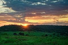 Fazenda_Catu_02 (Carlos Henrique Pereira) Tags: sunset landscape bahia brasil brazil nikon d7000 50mm f14 afs nikkor f14g afsnikkor50mmf14g rural golden hour hendheld dxo photolab on1 photoraw clouds farm