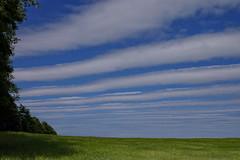 Lamellen-Wolken (Digitalsucher) Tags: clouds cloud wolken wolke nature digital blue white green kornfeld m43 mft landschaft landscape natur olympus 25mm18 2518 25mm 18 panasonic dmcgx7 dslm csc