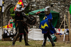 DSC_0769 (Coed Celyn Photography) Tags: knights knight ardudwy harlech dolgellau cymer abbey north wales welsh cymru battle medieval reenactment re enactment enactors larp living history historic historical armor armour weapons weapon sword shield axe flail outfit costume dress tabard chainmail