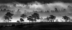 Vimianzo (Feans) Tags: sony a7r a7rii ii fe 100400 gm vimianzo fog neboa mist mencer sunrise raiolas sunrays galiza galicia