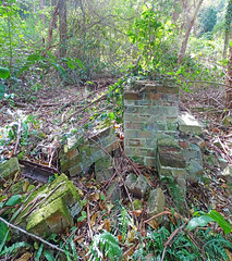 Ruin_11 (Tony Markham) Tags: mine mining coal coalmine coalmining old ruins ruin abandoned disused wollongong illawarra bush bushwalk escarpment