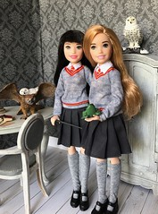New Hogwarts students (Foxy Belle) Tags: skipper babysitter rebodied harry potter girl hermione ginny barbie mattel 2018 poseable owl pets schleich diorama room scene gray white shabby