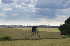 DSC04239 (mrschroedinger) Tags: agriculture harvest countryside bohemia czechrepublic landscape rural samyang 85mm14 sony sonya6000