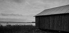 boathouse (jollila) Tags: raippaluotokesä2018 boathouse venevaja mustavalkoinen bw blackwhite mustavalko meri sea water vesi taivas sky greyscale harmaasävy ranta beach nikond90 d90 summer kesä landscape maisema