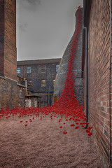 Poppies 'Weeping Window' (Explored) (g3az66) Tags: poppies weepingwindow stokeontrent iwm london poignant middleport middleportpottery getoneoveronfionabruce