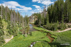French Creek (kevin-palmer) Tags: snowyrange medicinebownationalforest wyoming mountains summer july afternoon nikond750 tamron2470mmf28 water flowing creek stream trail path green grass clouds wetland
