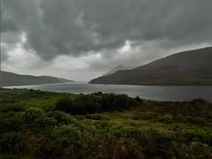 Irland (Nadja Golitschek) Tags: irland grüneinsel ireland insel tourismus impressionen fjord connemara natur aussicht stimmung wasser