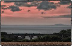 Crack of Dawn (Welsh Gold) Tags: twin car arriva trains wales class 142 units 5f00 cardiff canton sidings bridgend ecs sunrise twilight dawn porthkerry viaduct valeofglamorgan barrysouthwales