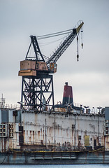 harbor crane 31 (pbo31) Tags: bayarea california nikon d810 july summer 2018 boury pbo31 color sanfrancisco city urban missionbay construction crane drydock port harbor shipyards gray 31 steel industrial dogpatch ship sail container marina