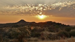 im ersten Sonnenlicht des Tages (marionkaminski) Tags: namibia afrika africa savanne dornbuschsavanne sonnenaufgang sunrise landscape paisaje paysage wolken clouds nubes nuages sky ciele cielo panasonic lumixfz1000 leverdusoleil salidadelsol paesaggio