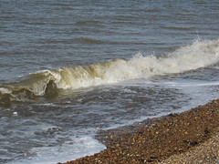 IMG_9642 (griffpops_deptford) Tags: whitstable reculver oysters seaside sea beach