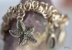 A Charmed Life (PhilR1000) Tags: trinket macromondays silver charmbracelet sea jewellery trinkets