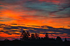 Sunset fire (echumachenco) Tags: sunset evening fire colors red orange sky blue cloud tree silhouette july summer freilassing bavaria bayern germany deutschland nikond3100
