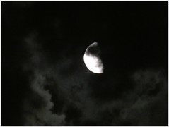 Eerie night (MaxUndFriedel) Tags: nature summer eerie night storm clouds racing moon