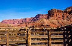 Paria Canyon (Buck--Fever) Tags: pariaplateau pariacanyon leesferry fence corral vermillioncliffs northernarizona arizona arizonaskies arizonadesert arizonapassages landscape nature fujichrome scanfromslide