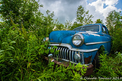 Desoto 02 (Claude Tomaro) Tags: red blackandwhite desoto junk yard junkyard classic blue boneyard selective color ontario canada claude tomaro