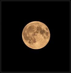 Summer Moon (Ernie Misner) Tags: f8andloveyourmoon fullmoon moon lakewoodwa tacomawa erniemisner lightroom nik topaz topazstudio capturenx2 cnx2 nikon200500