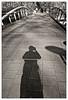 Seul sur le pont (Jean-Marie Lison) Tags: eos80d sigmaart bruxelles anderlecht peterbos pont ombre noiretblanc nb monochrome