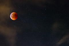 Mondfinsternis (ElbSachse) Tags: stars sterne mondfinsternis blutmond canon nacht natur langzeitbelichtung