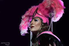 Euphoria_5437 (jeanfrancoislaforge) Tags: ellie euphoria singer syage performer music portrait reflection nikon d850 blackbackground pink