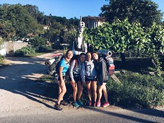"""Camino OT Santiago 2018 • <a style=""""font-size:0.8em;"""" href=""""http://www.flickr.com/photos/128738501@N07/28926583047/"""" target=""""_blank"""">View on Flickr</a>"""
