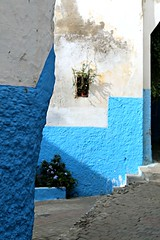 lines and levels (daniel.virella) Tags: tanger morocco stairs window alley medina blue picmonkey