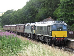 Class 25 Rats at Irwell Vale ELR boring Diesel Gala 07/07/2018 (37686) Tags: class 25 rats irwell vale elr boring diesel gala 07072018