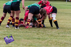 July20.ASGRugby.DieselTP-1251 (2018 Alberta Summer Games) Tags: 2018asg asg2018 albertasummergames beauty diesel dieselpoweredimages grandeprairie july2018 lifehappens nikon rugby sportphotography tammenthia actionphotography arts outdoor photography