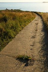 A road to the sea (juliecarmen.fahy) Tags: scotland argyll kintyre ecosse sea water sunset fields countryside island shadows perspective