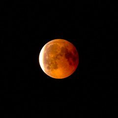 Lunar Eclipse at its End (redfurwolf) Tags: lunareclipse moon fullmoon sky night nightphotography eclipse lunar nature outdoor redfurwolf sonyalpha sony a7rm3 tamron150600g2 bloodmoon