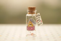 I LOVE U more than words can ever describe,Tiny message in a bottle,Miniatures,Personalised ,Valentine Card,Gift for her/him,Girlfriend gift, birthday card, message card and miniatures card ideas (charles fukuyama) Tags: bird funnycard greetingcard holidaycard paper star glitter bottle giftideas tiny cute homedecor deskdecoration lovecard kikuike cuteanimals