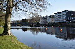 Not long now (Phil Gayton) Tags: water grass tree building structure buoyant vire island river dart totnes devon uk hightide