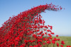 Poppies Wave (Steeler Nation UK) Tags: poppies wave fort nelson royal armouries