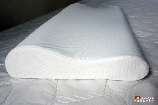 GreySa格蕾莎 無毒環保記憶枕 (1).JPG