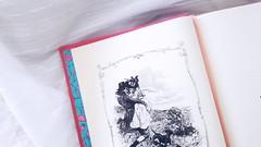 Jane austen (Lemon Mousse!) Tags: amantedelivros livro leitura janeausten literaturainglesa literatura cartoon design razaoesensibilidade read resenha