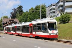 2018-07-02, AB, Trogen (Fototak) Tags: schmalspurbahn treno train railway ab tb appenzellerland switzerland s21 sbahn stadler 31
