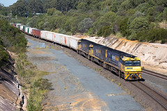 In to the Yard (PJ Reading) Tags: train rail railway track transport travel transportation cargo goods freight locomotive intermodal container superfreighter diesel queensland qld australia brisbane pacificnational nr nrclass acaciaridge pn pacnat melbourne sydney interstate