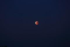 Full Lunar Eclipse_2018_07_28_0025 (FarmerJohnn) Tags: moon kuu kuunpimennys eclipse lunar lunareclipse partial fulllunareclipse osittainen täydellinenkuunpimennys fulllunareclipse27thjuly2018 luna moonlight kuutamo january winter tammikuu talvi 27thjuly2018 2772018 full fullmoon canon canoneos5dmarkiii canonef70200l40isusm suomi finland laukaa valkola anttospohja juhanianttonen