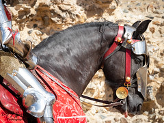 Knights Mount. (dgjeffery1969) Tags: knight mount armour jousting tourney horseback horse framlingham castle suffolk medieval