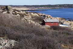Vikerkilen 1.4, Hvaler, Norway (Knut-Arve Simonsen) Tags: asmaløy hvaler norge норвегия norway noriega norwegen norvegia norvège नॉर्वे 挪威 ノルウェー நோர்வே νορβηγία sydnorge sørnorge østlandet glomma oslofjorden østfold norden scandinavia скандинавия э́стфолл фре́дрикстад гло́мма ослофьорд vikerkilen