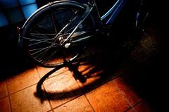 shadow of mama -chari (Mucun Jixiao) Tags: blue orange night light bicycle ママチャリ