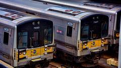 Long Island Rail Road (Miradortigre) Tags: train suburban trenes trains nyc penn station estacion newyork long island rail road