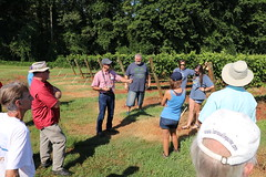 IMG_9124 (UGA CAES/Extension) Tags: vineyard wine winery stonepilevineyard viticulture viticultureteam northgeorgia winecountry ugacooperativeextension uga extension grapes ugaextension cainhickey